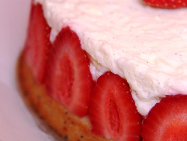 עוגת לימון ופרג14