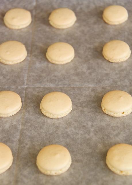 עוגיות מקרון בטעם לימון וקרם שמנת8