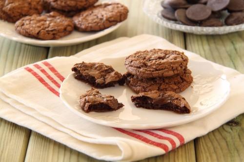 עוגיות שוקולד שוקולד-צ'יפס