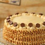 עוגת שוקולד וחמאת בוטנים
