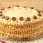 עוגת שכבות שוקולד וחמאת בוטנים (עוגת יום ההולדת שלי!)