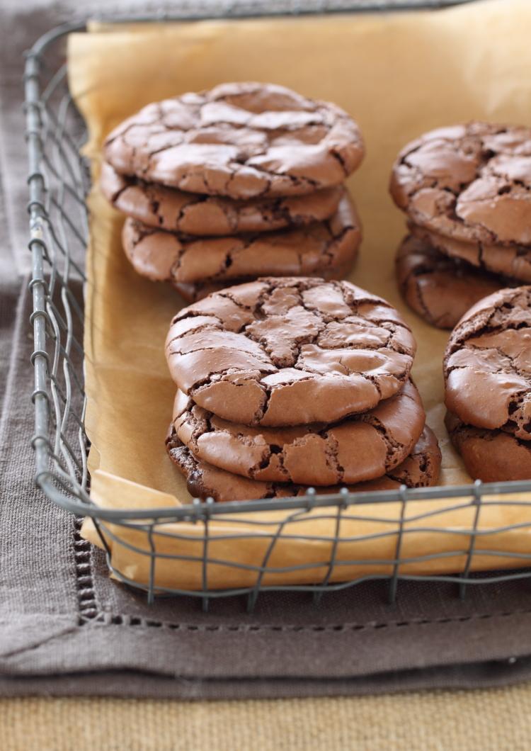 עוגיות פאדג לפסח